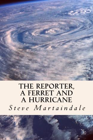 The_Reporter Book Cover