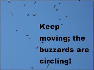 Keep moving snip