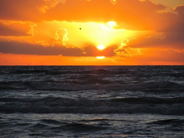 Gulf sunrise