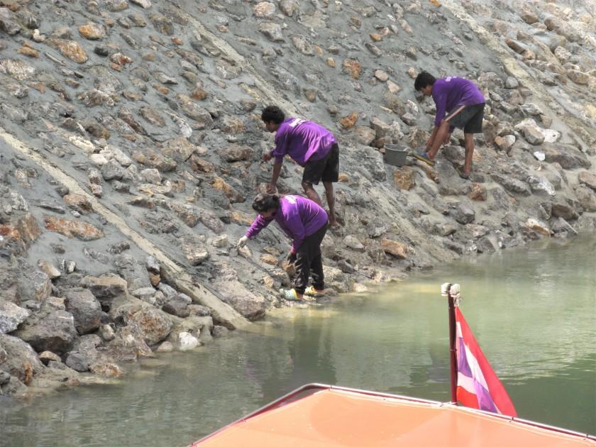 River bank maintenance