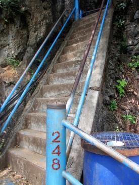 Step No. 248