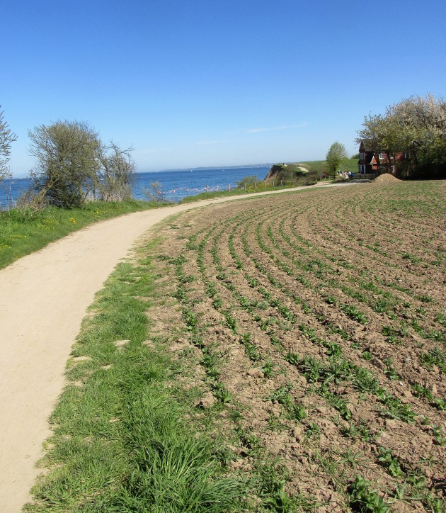 Lübeck trail