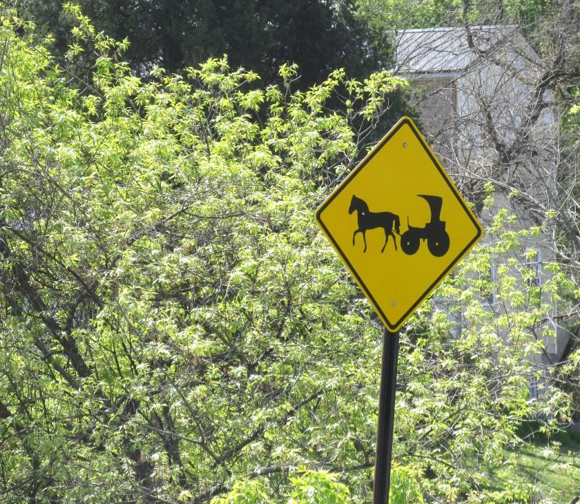 Horse traffic